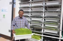 UN World Food Programme Innovation Accelerator: Hydroponics
